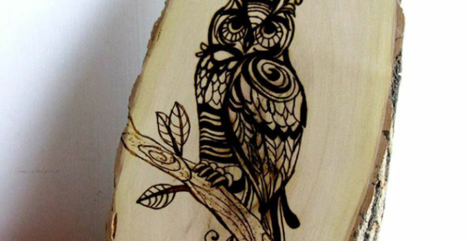 Wood burned tree slice