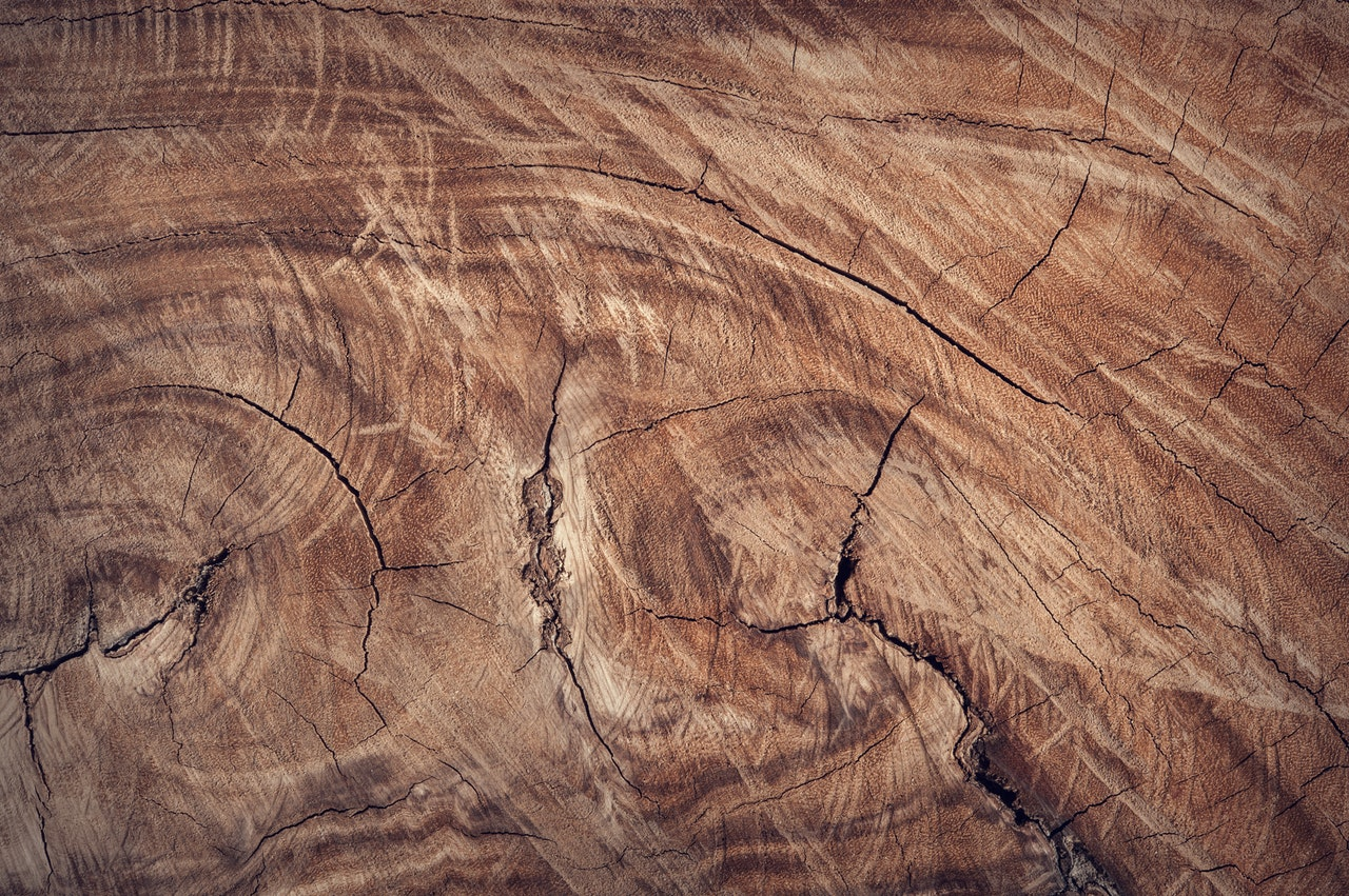what-is-wood-made-of