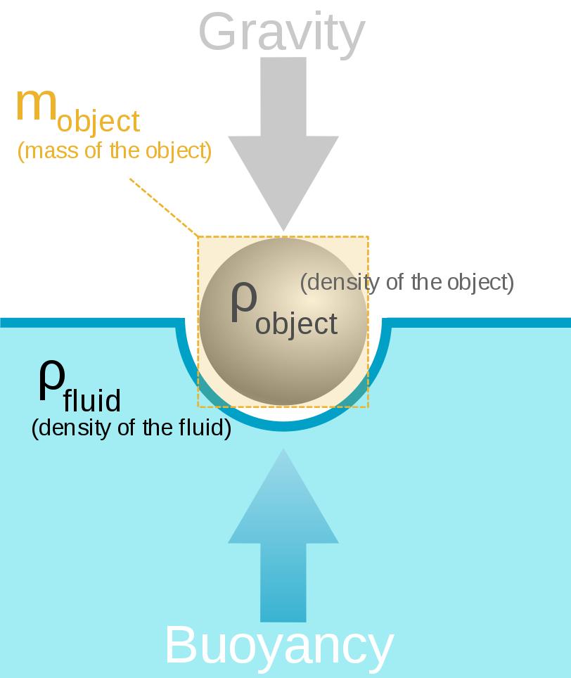 Buoyancy force