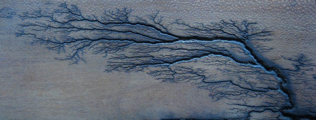 fractal wood burning