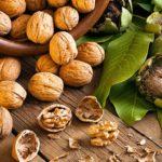 What does a walnut tree look like?